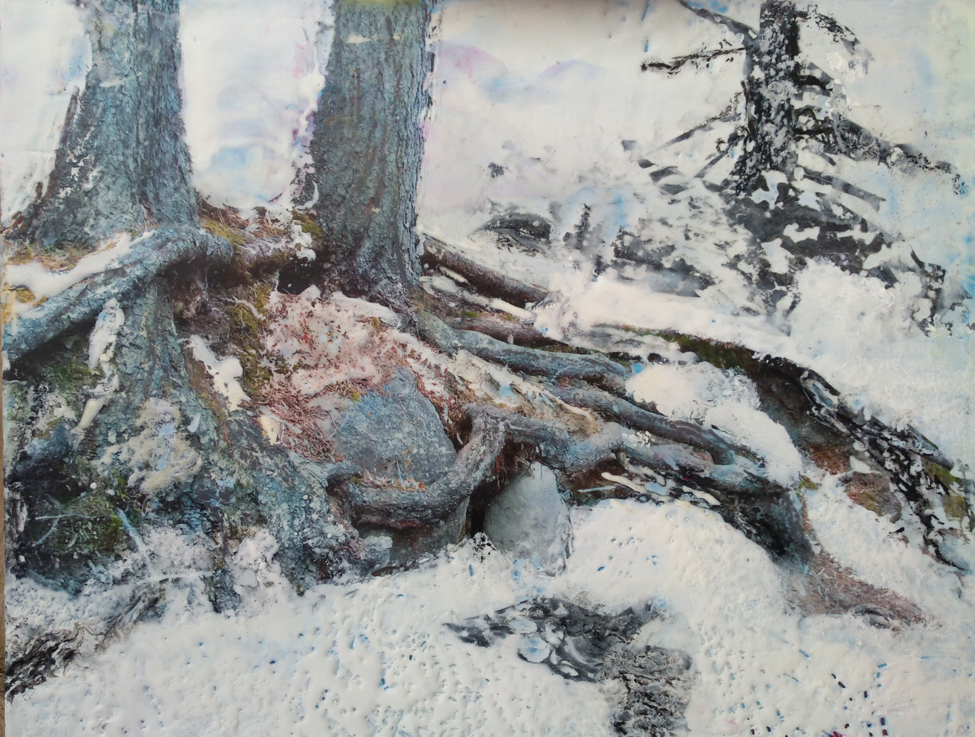 Hieblinger. Snow Laced Roots; oil, wax, resin, photo transfer; 11hx15w